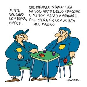 cipputi_stress