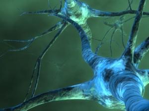 neuronsyx9